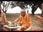 Another example of Srila Prabhupada's Magic!