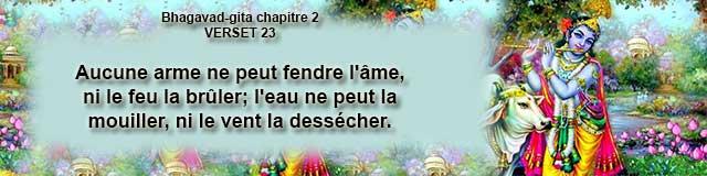 bg.2.23 (7)