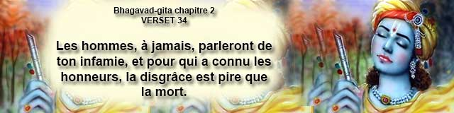 bg.2.34 (11)