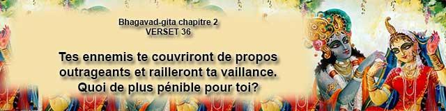 bg.2.36 (13)