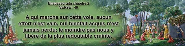 bg.2.40 (17)