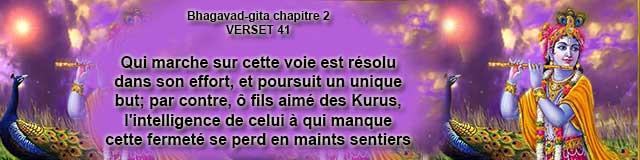 bg.2.41 (18)