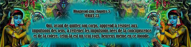 bg.5,23(159)