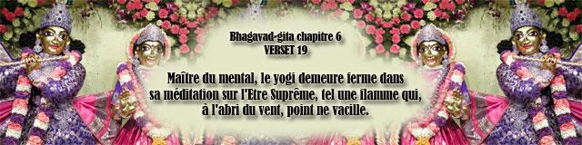 bg.6,19(181)