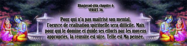 bg.6,36(193)
