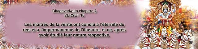 bg.2.16 (3)