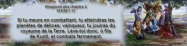 bg.2.37 (14)