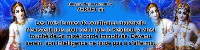 bg.2.65(41)