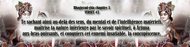 bg.3.43(96)