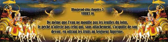 bg.5,10(146)
