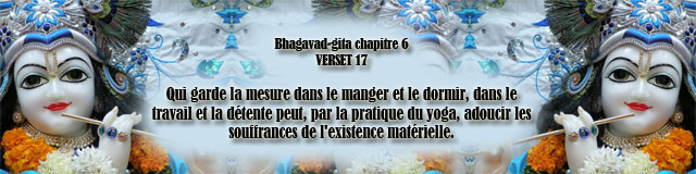 bg.6,17(179)